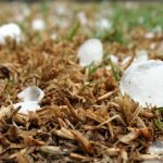 4 things to look for after a hail storm